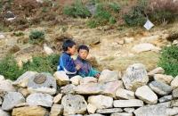 Sherpa boys